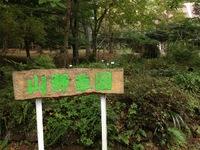 20131009山野草園.jpeg
