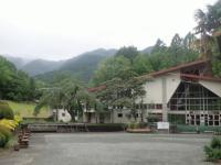 ネムノキ風景.JPG