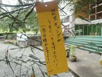 昆虫キャンプ.JPG