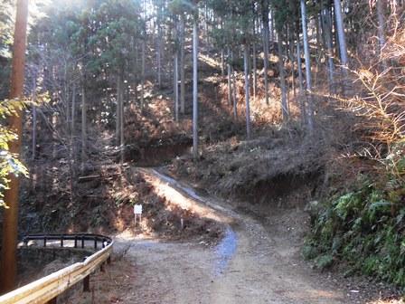 高取山の間伐作業 - ふれあいブ...
