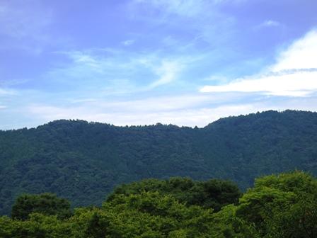 http://fureai-aikawa.com/blog/uploaded/IMGP3436.JPG