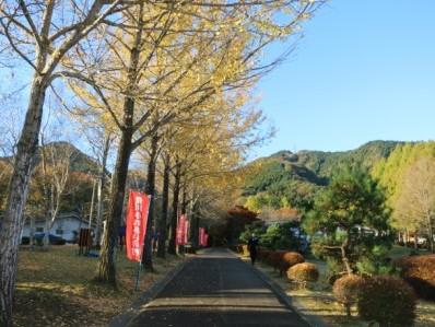 http://fureai-aikawa.com/blog/uploaded/IMG_8642.JPG