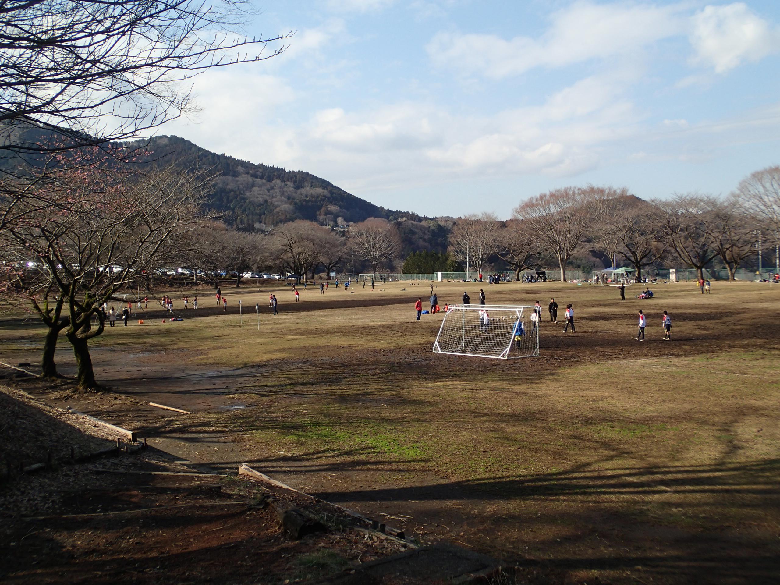 http://fureai-aikawa.com/blog/uploaded/P3103498.JPG