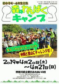 H3104WANPAKU.jpg