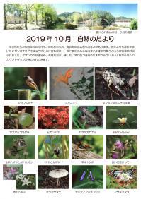 自然のたより2019.10月最新_page-0001.jpg