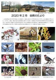 自然のたより2020.2月集約_000001.jpg