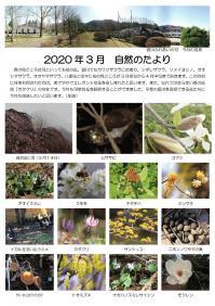 自然のたより2020.3月_000001.jpg